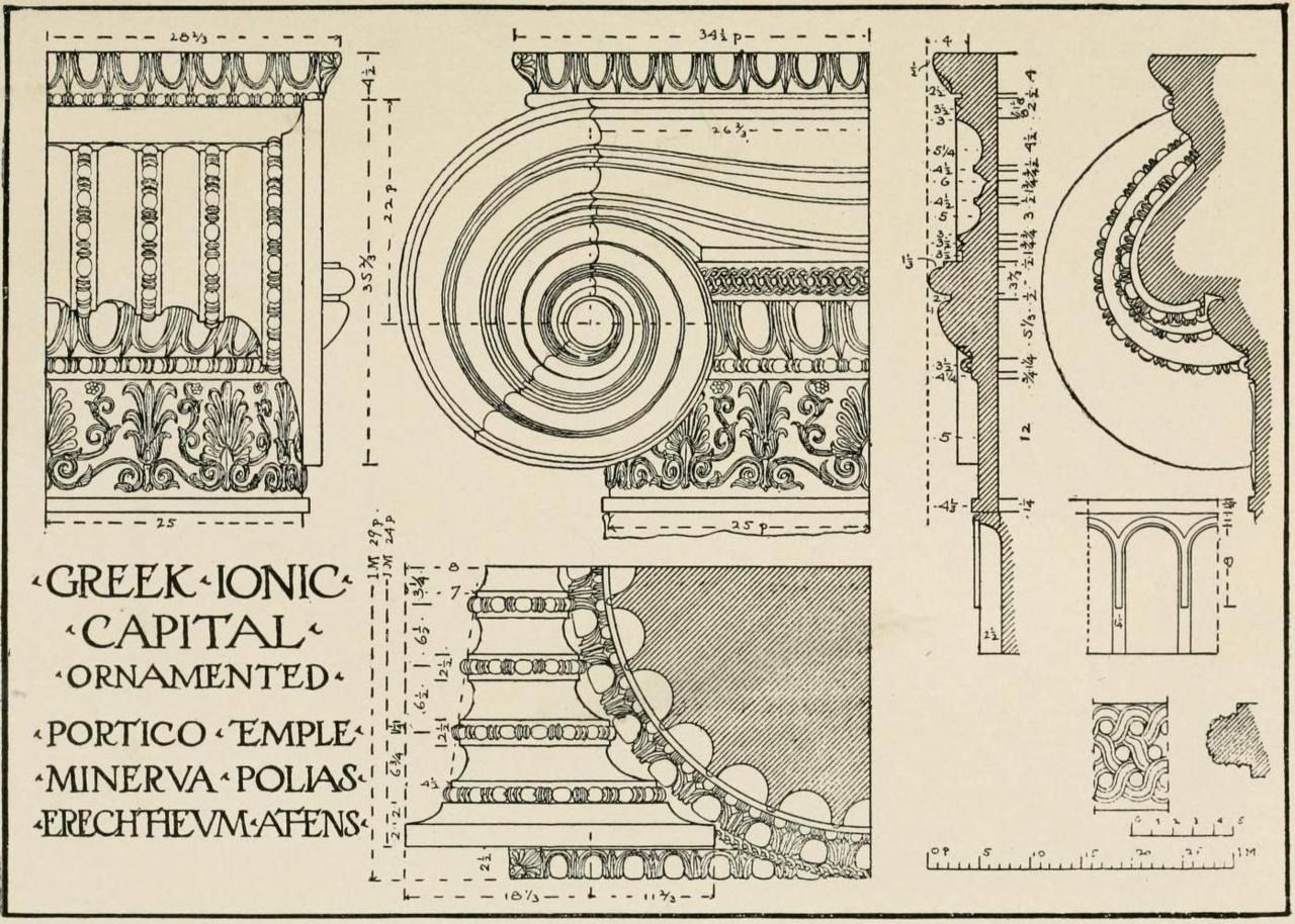 Study Of A Greek Ionic Capital From The Temple Of Minerva
