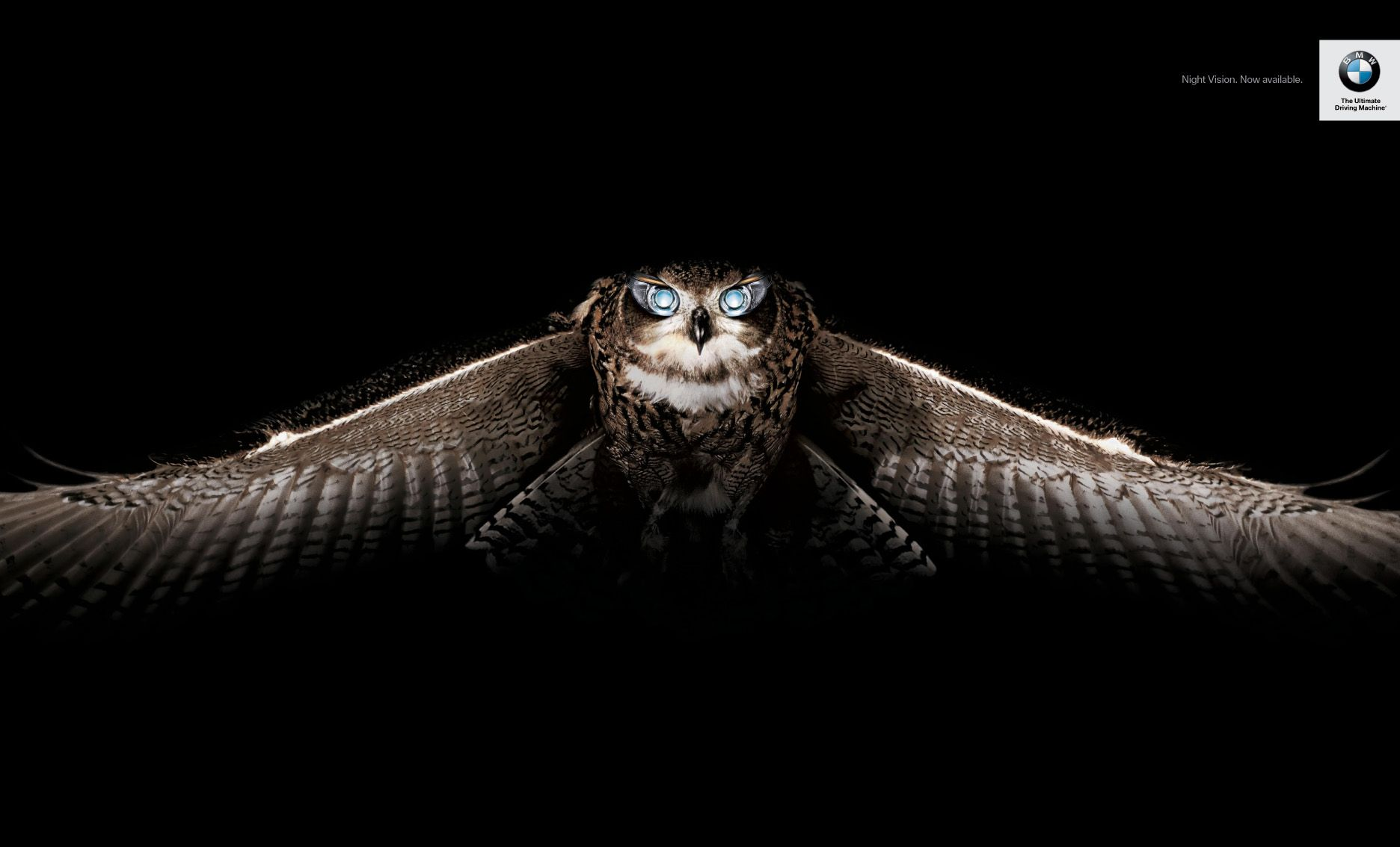 BMW's Night Vision owl ad