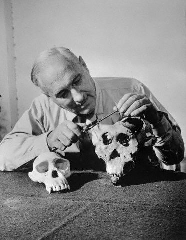 Louis Leakey was a British archaeologist and naturalist whose work was important in establishing human evolutionary development in Africa. He also played a major role in creating organizations for future research in Africa and for protecting wildlife there. In natural philosophy he asserted Charles Darwin's theory of evolution unswervingly and set about to prove Darwin's hypothesis that man arose in Africa. Interestingly, he was a very devout Christian.