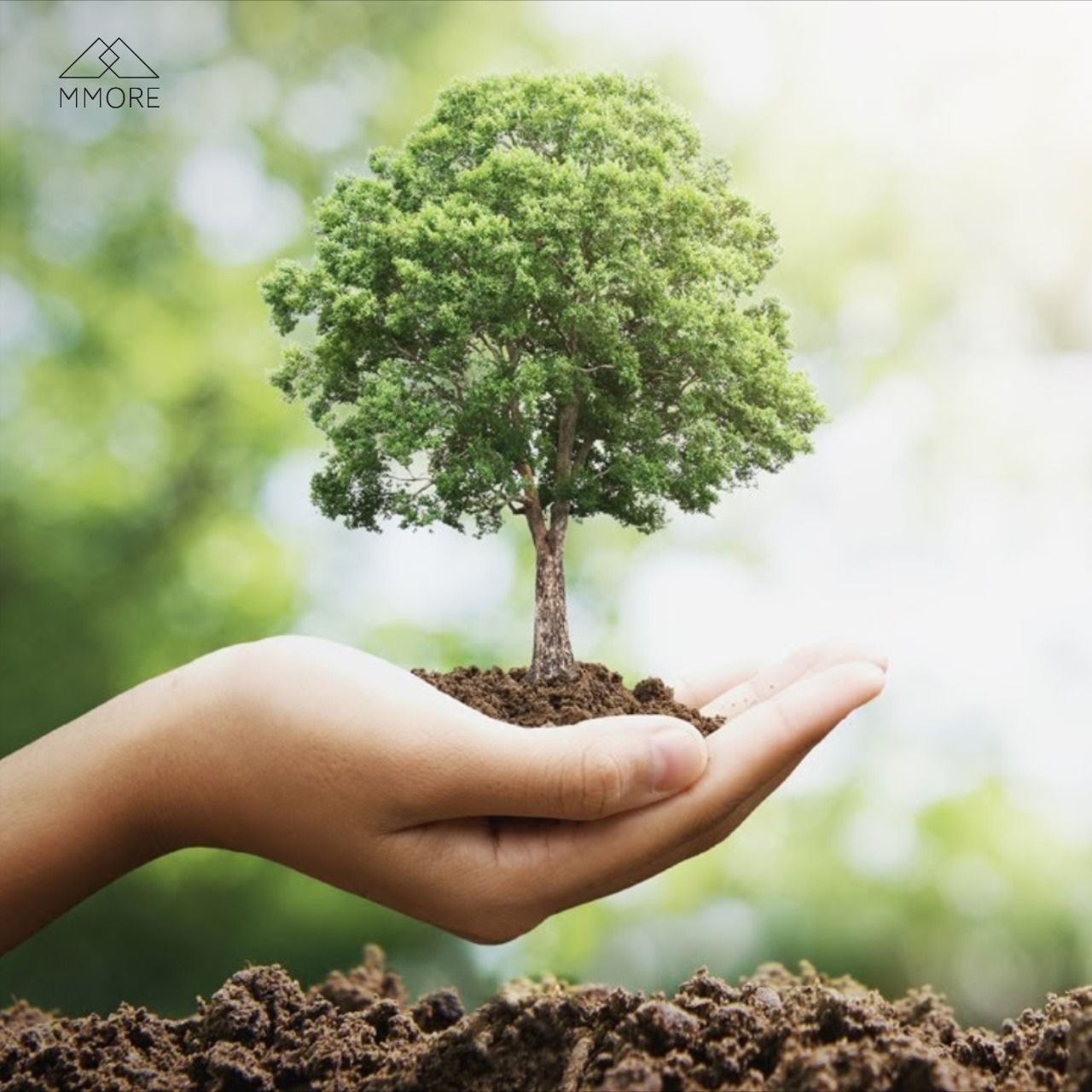 9 Reasons To Plant A Tree Blog Plant Trees Save The Earth Giving Back To Nature Trees To Plant Save Earth Tree Planting Quotes