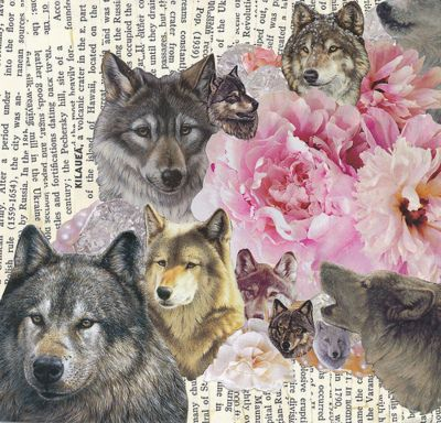 Gorgeous wolf and roses collage on a backdrop of vintage text.