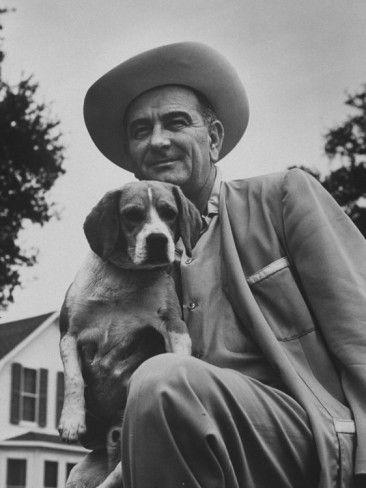 Senator Lyndon B Johnson With Pet Called Little Beagle Jr On His