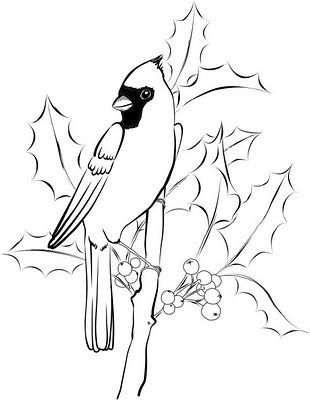 Cardinal And Holly Bird Embroidery Pattern Embroidery Patterns