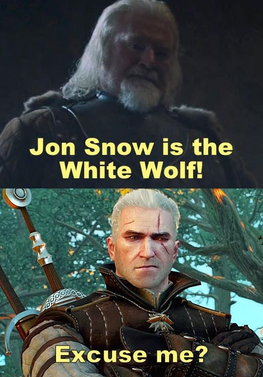 The White Wolf The Witcher Books The Witcher Wild Hunt