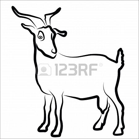 Goat Silhouette Isolated On White Animal Coloring Pages Goats Pictures To Draw
