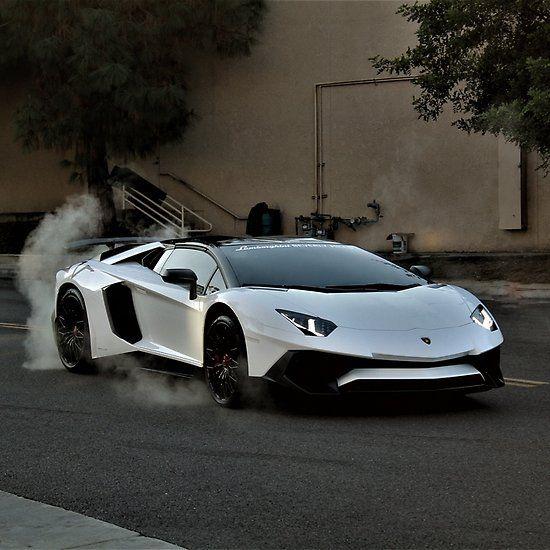 Angry Bull Lamborghini Aventador Sv Xavier Larios Photography