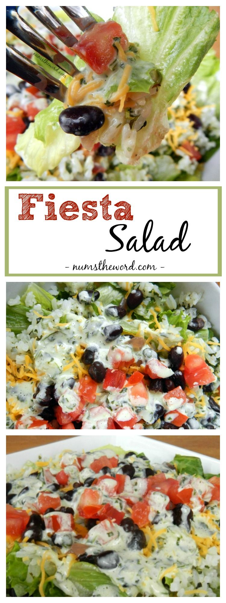 This Easy Fiesta Salad can be whipped up in minutes. It's a light salad that is also filling. Enjoy it as it is or add shredded chicken for a complete meal!