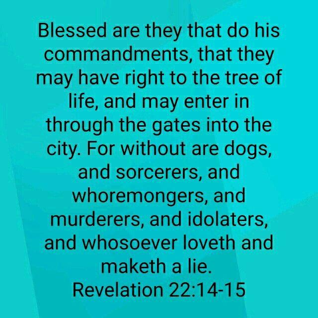 Rev22:14-15