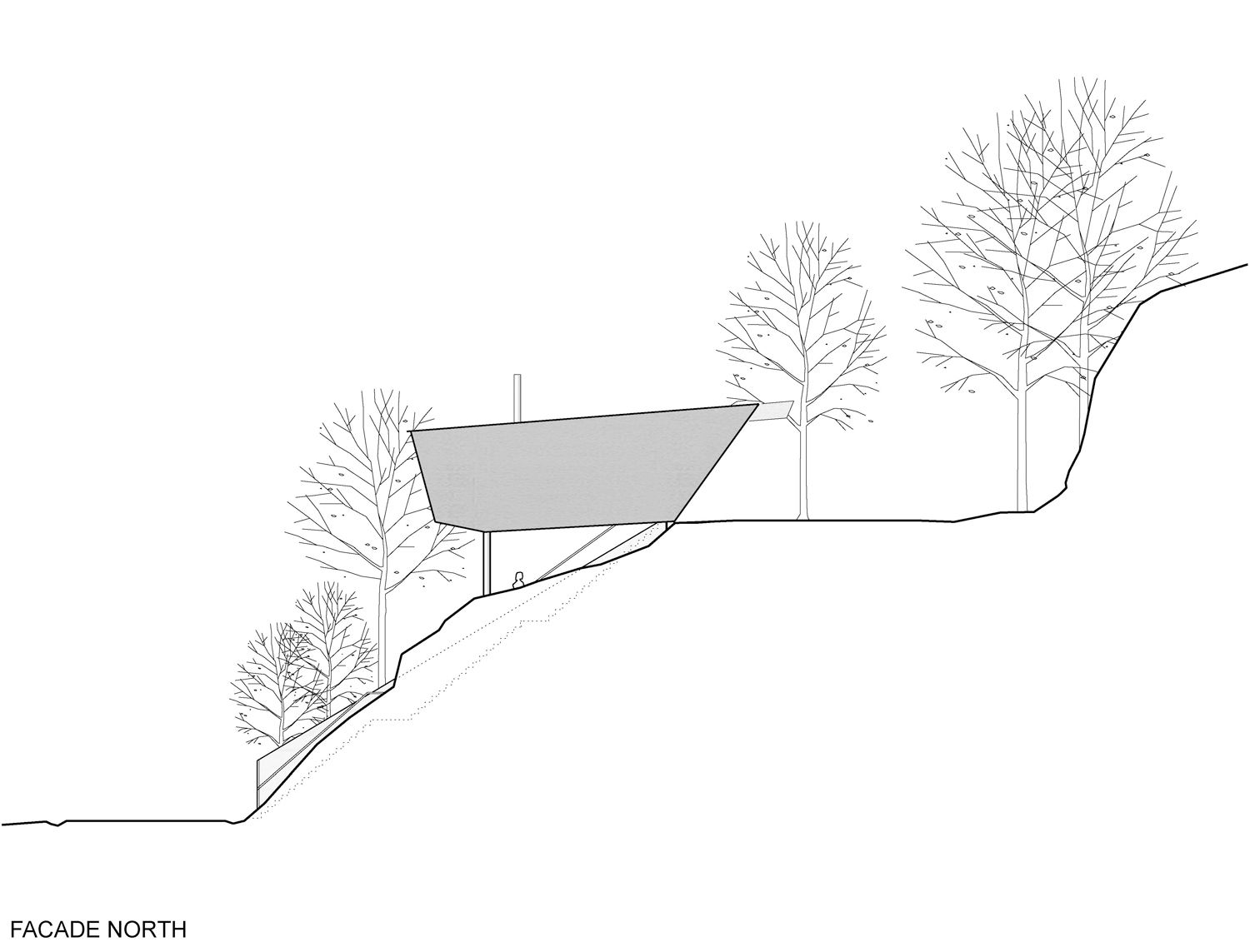 Simple Drawing Trees Section Architecture Sanaa