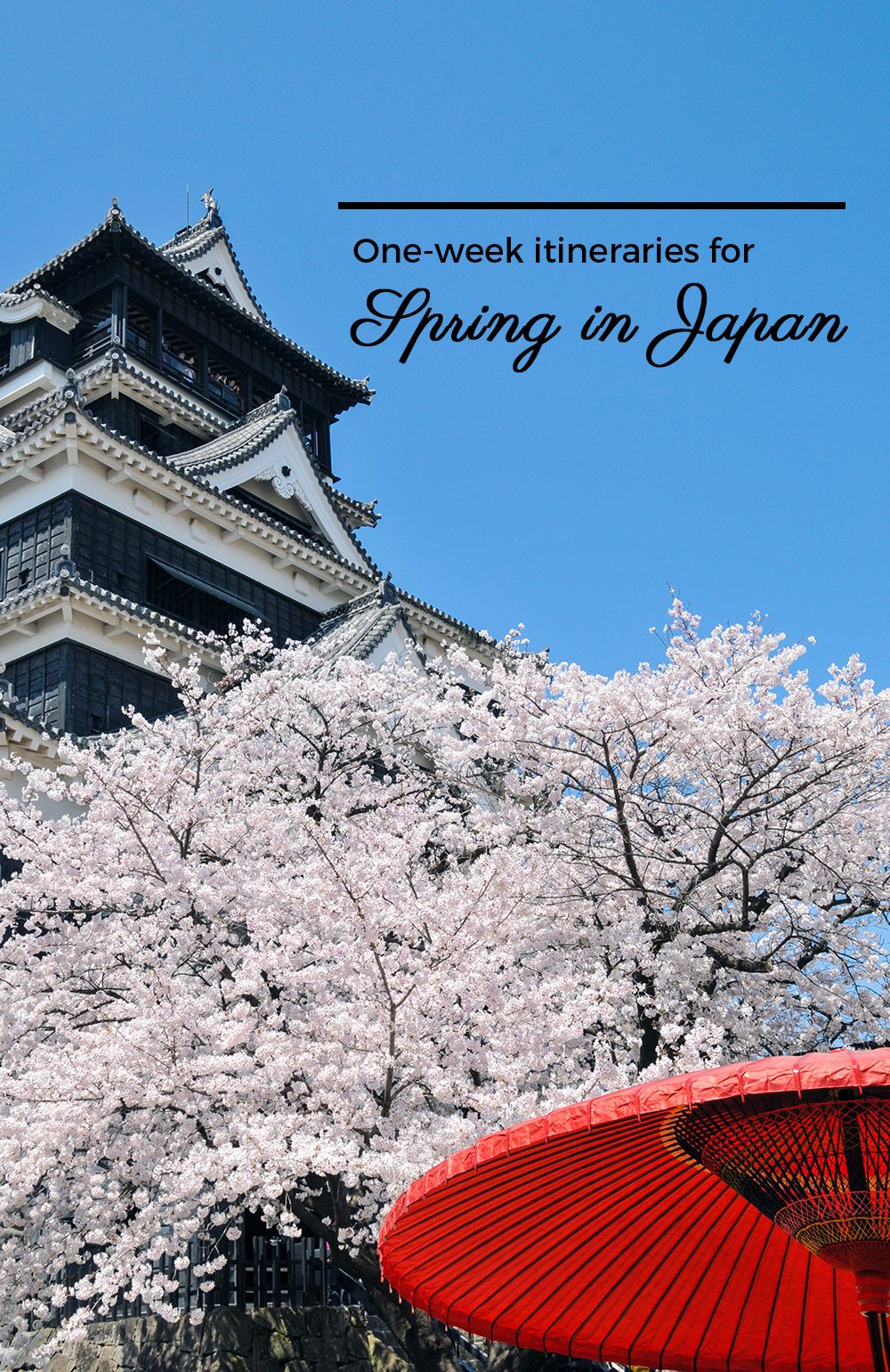 Spring In Japan 2019 When And Where To See The Cherry Blossoms Japan Itinerary Travel Destinations Asia Japan Travel Guide