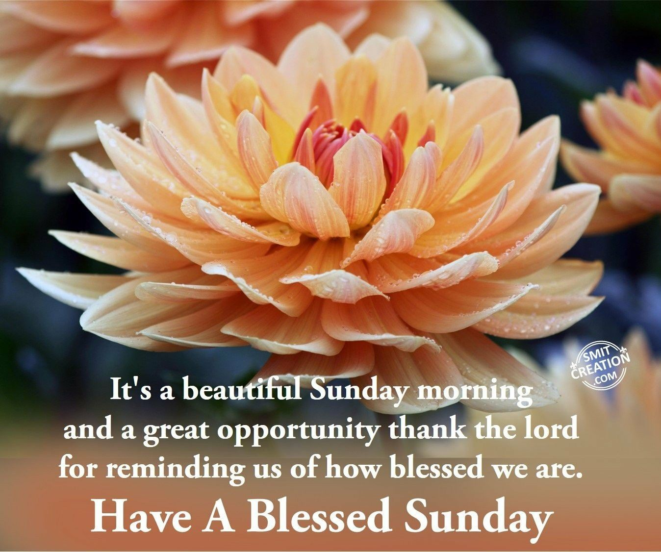 Pin by Karen Ford Robinson on Sunday Mornings in 20   Good ...