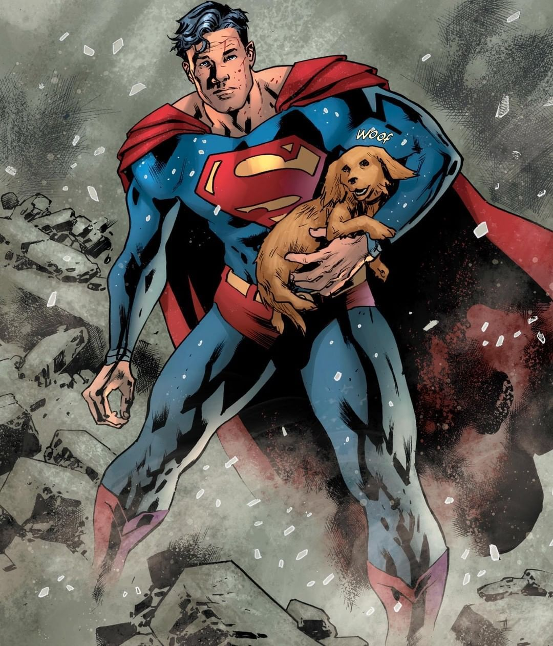 Dc The Man of Steel is never too busy to save a pup Whats your review of SUPERMAN bedava