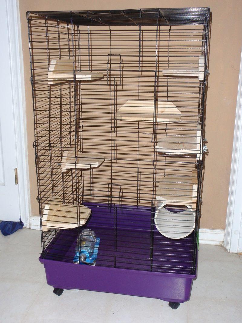 chinchilla cage - photo #39