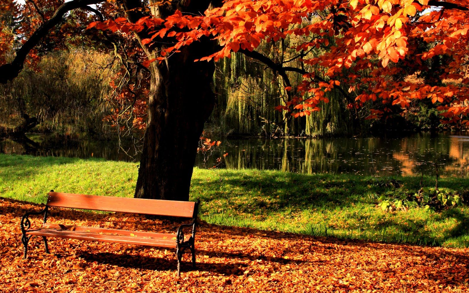 Spring Season | ... HD Wallpapers, High Quality Background of ... for Park Background With Bench  67qdu