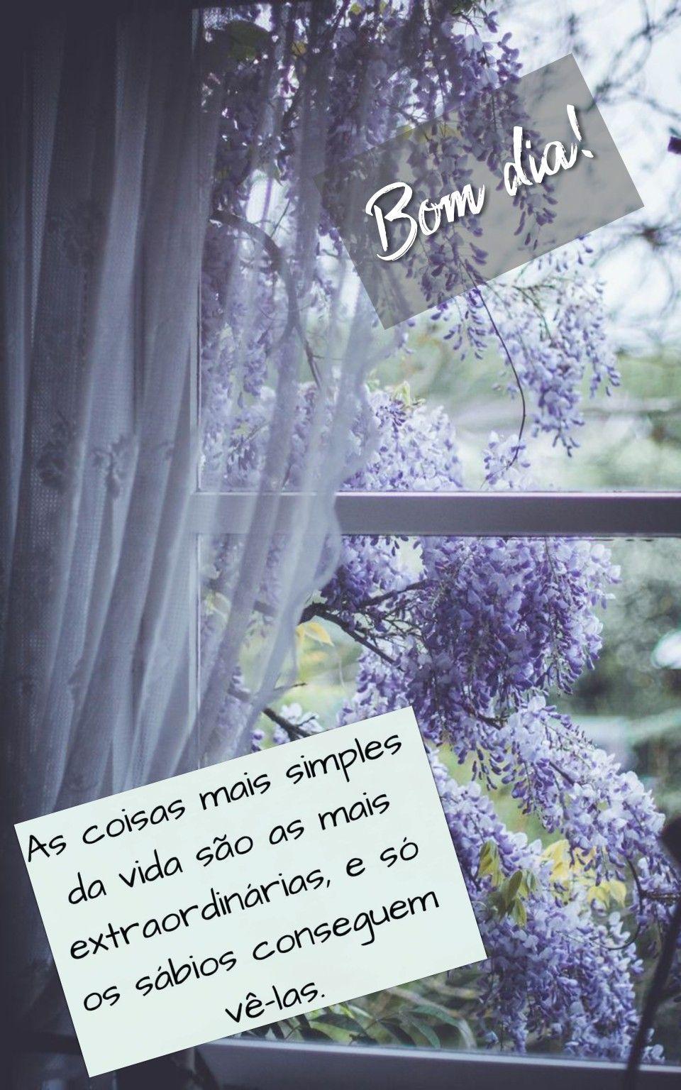 Bom Dia Com Flores De Rosa Alfredo Mechico Em B2 1 Astral Diario