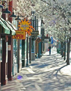 Just Another Blossomy Morning On Front Street In Downtown Traverse