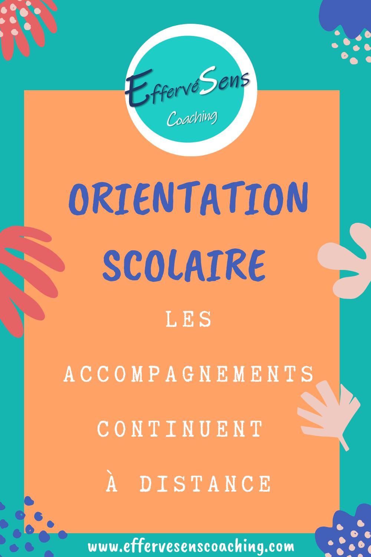 Orientation Scolaire A Distance Orientation Scolaire Scolaire Orientation Professionnelle