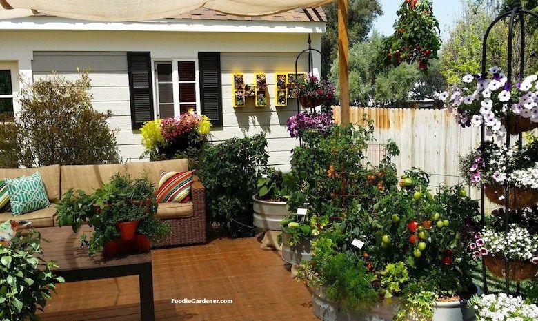 Potted Vegetable Garden Plans And Design on potted garden ideas, container gardening design, container herb garden design,