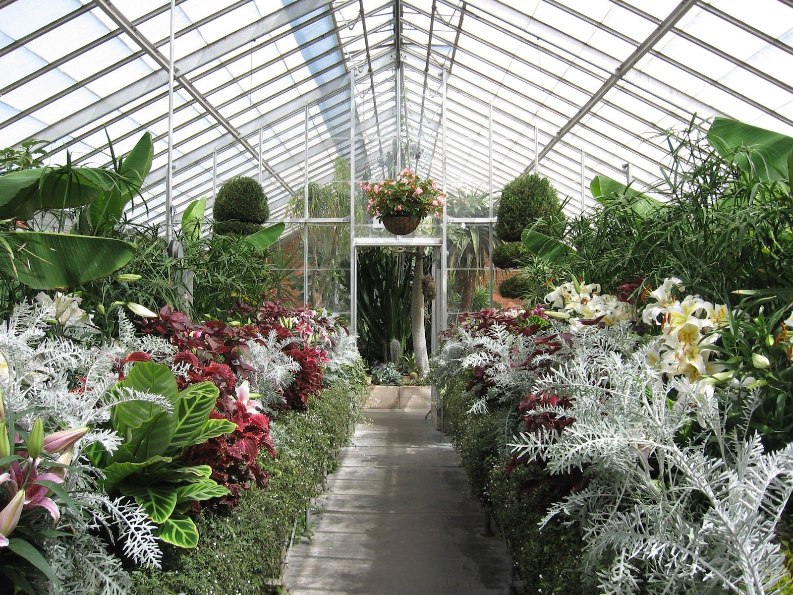 Greenhouse At Kingwood Center In Ohio With Images Kingwood