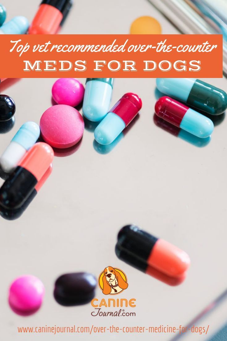 Which OverTheCounter Medications Are Safe For Dogs?