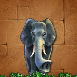 Games To Play On Safari