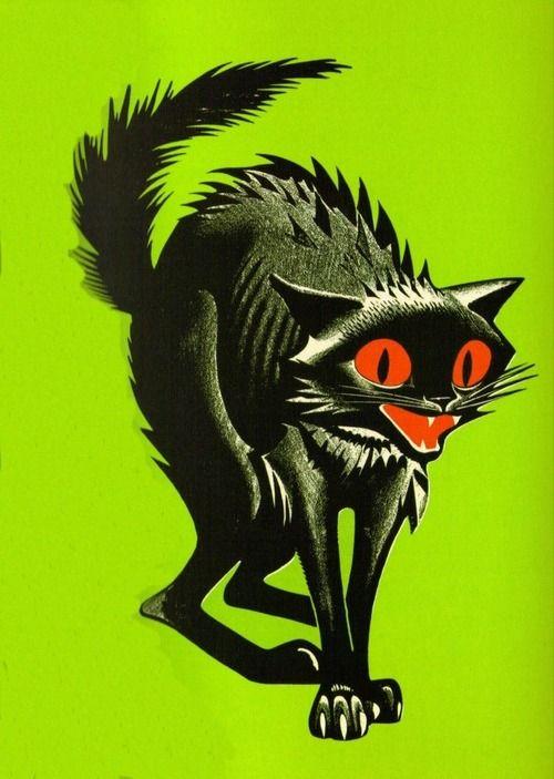 Classic black cat