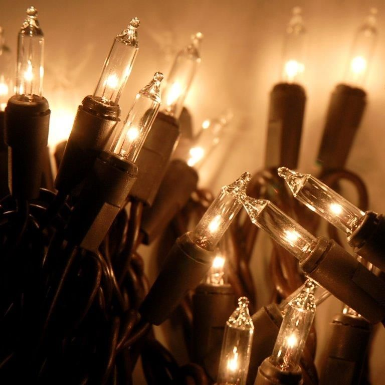 Mini String Lights Classy 50 Light 155' Brown Wire Clear Mini Light String Set  Light String Design Inspiration
