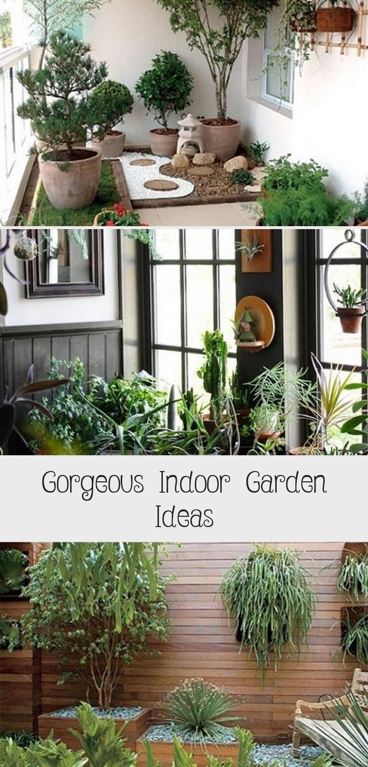 Gorgeous Indoor Garden Ideas In 2020 Indoor Garden Indoor Gardening Kit Vegetable Garden For Beginners