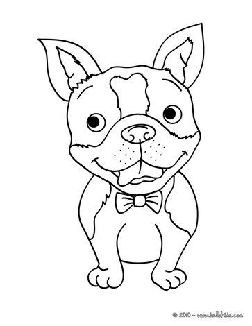 Smiling Dog Coloring Page