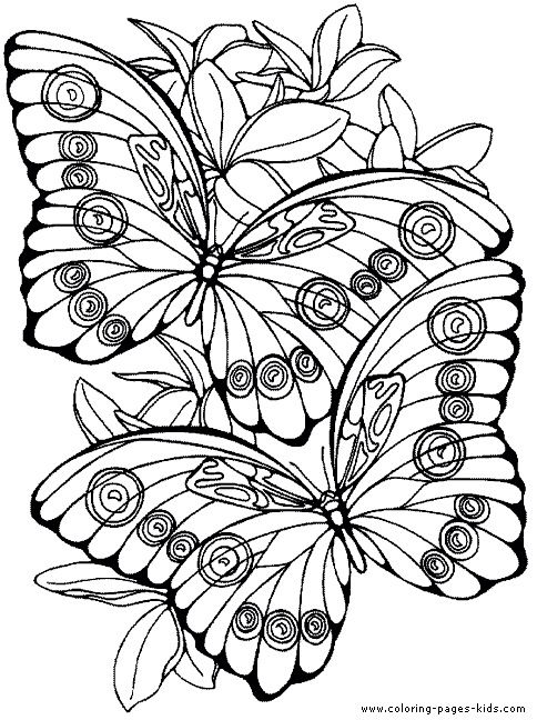 Butterfly | Ana Rosa | Pinterest | Colores, Pintar y Dibujos