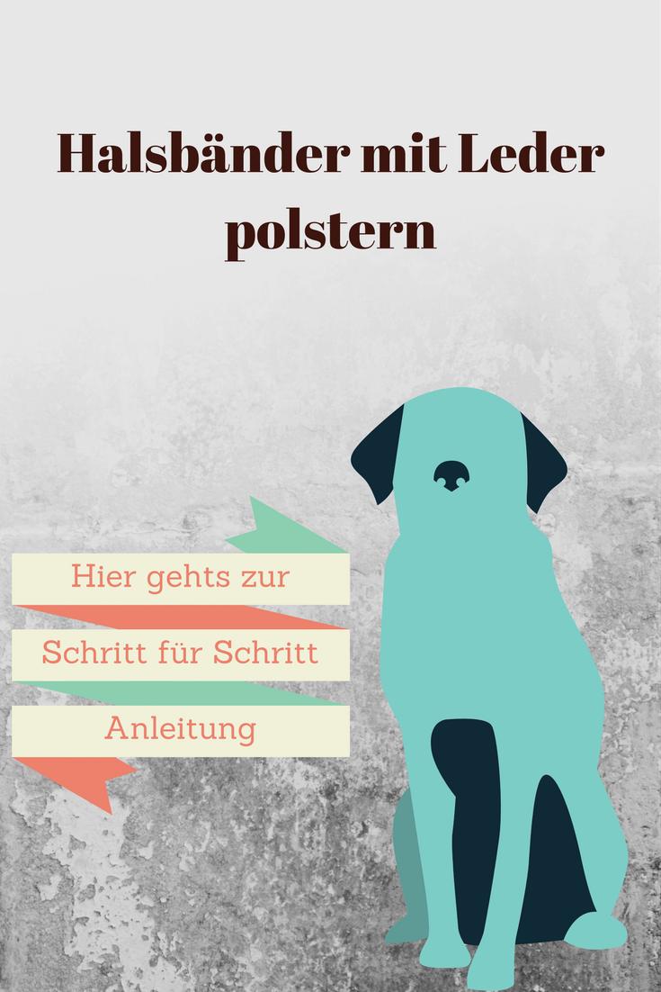 Hunde Sachen Kaufen : diy ledergepolstertes hundehalsband diy hunde hundehalsband und hundehalsband selber ~ Watch28wear.com Haus und Dekorationen