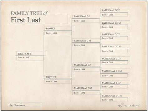 family tree template finder free charts for genealogy ancestry