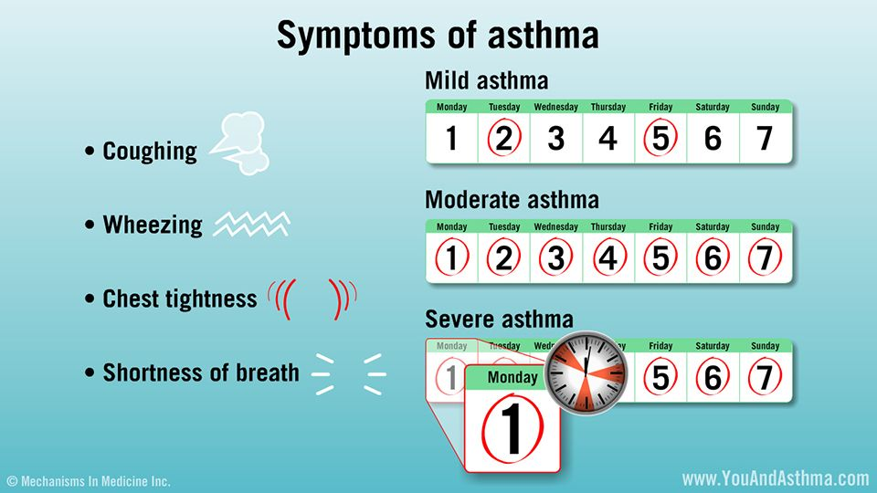 Air pollution due to climate change worsens allergy and asthma - sample asthma action plan