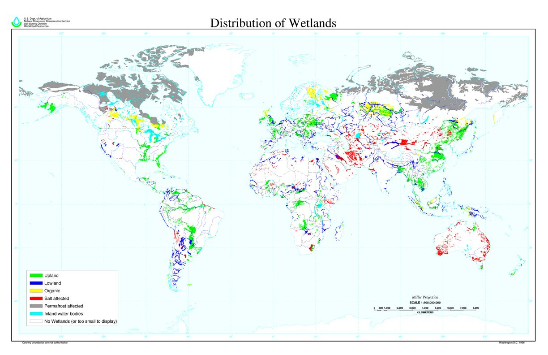 Distribution of wetlands map Summer Camp Pinterest