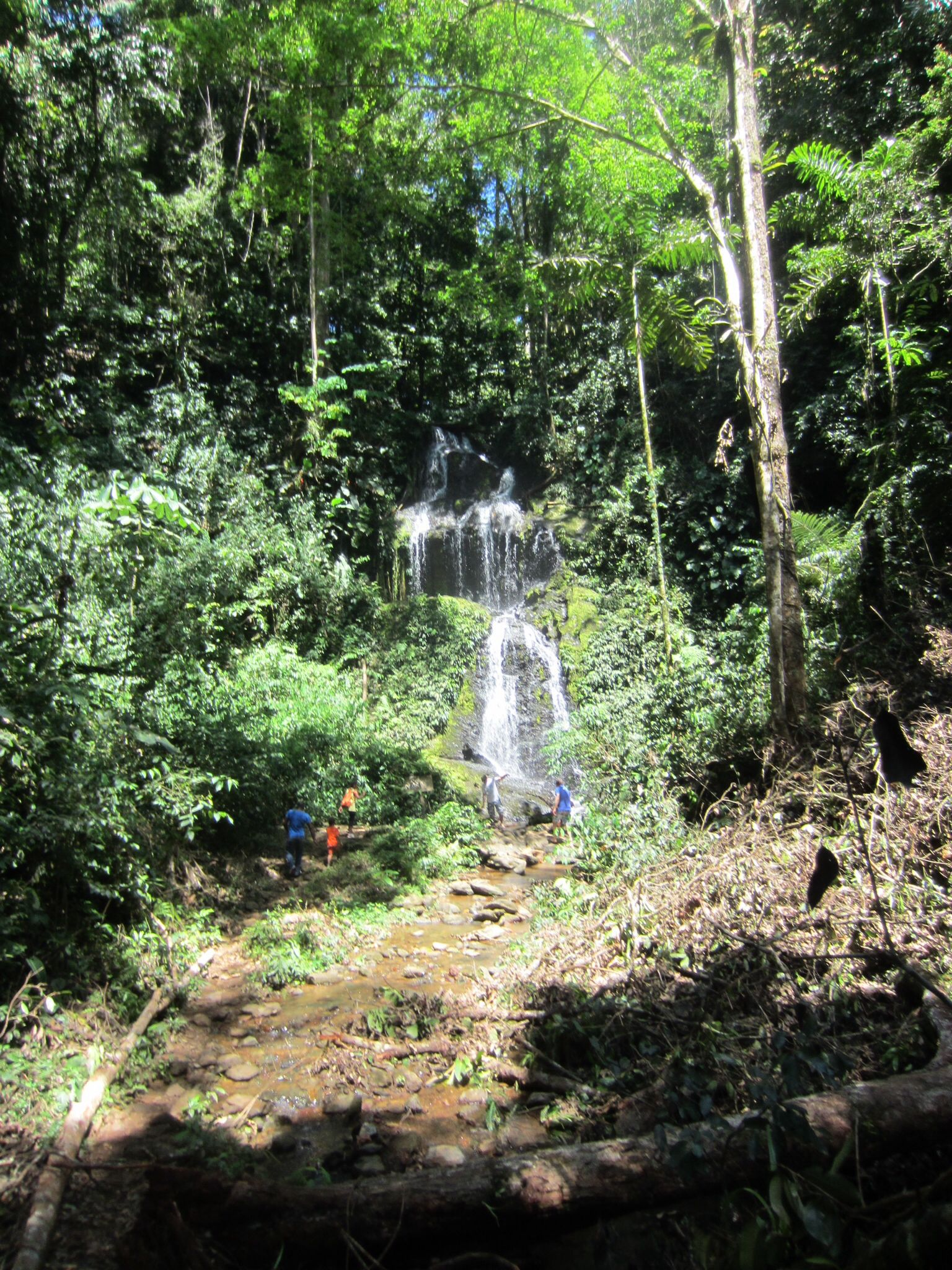 Ireneval Brownsberg Suriname Mooie Bestemmingen Ver Weg Bestemmingen
