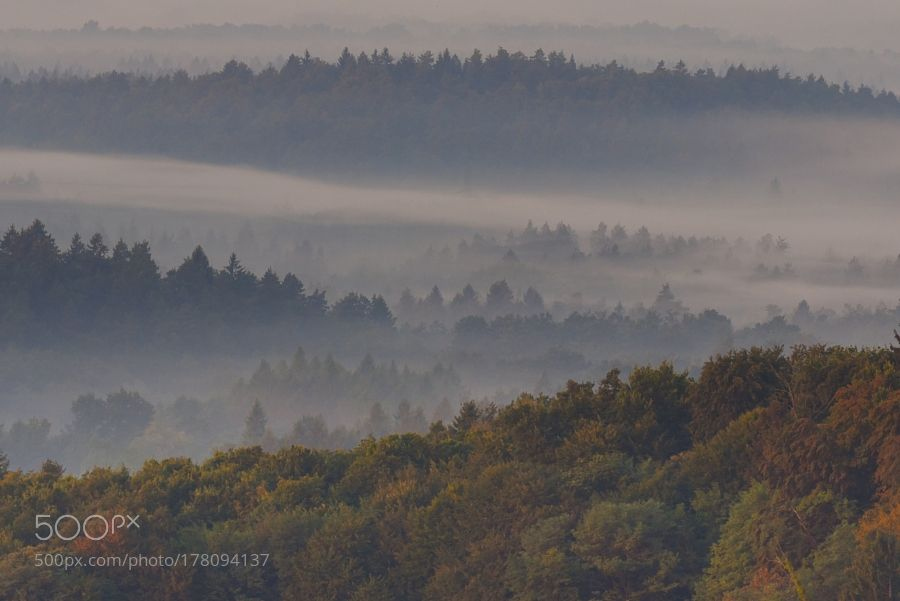 Layers of Autumn by dornikt. Please Like http://fb.me/go4photos and Follow @go4fotos Thank You. :-)