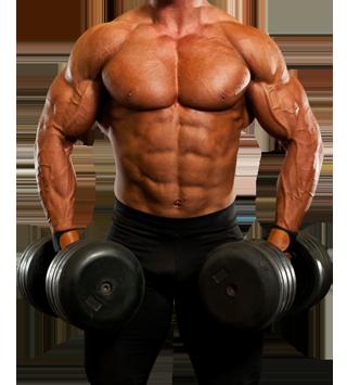 Body Building Photo Makingeasy To Use Fast Have More 50 Photo Men S Body Builder Phototag Man Bod Body Builder Fitness Motivation Body Body Building Men
