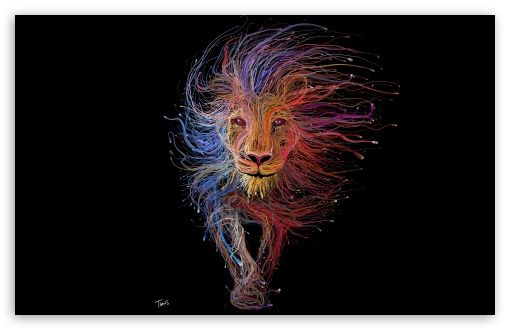 Lion King Hd Desktop Wallpaper Widescreen High Definition Fullscreen Lion Artwork Lion Illustration Lion Wallpaper