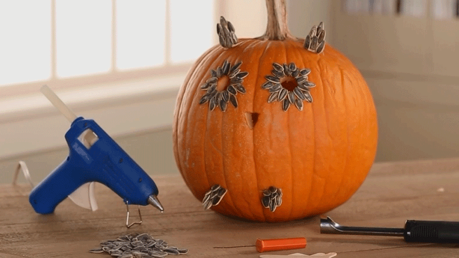 You Have to See These Creative Pumpkin Designs | Owl ears, Owl ...