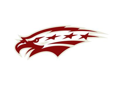 Washington Sports Logo Design Lightning Logo Bird Logos