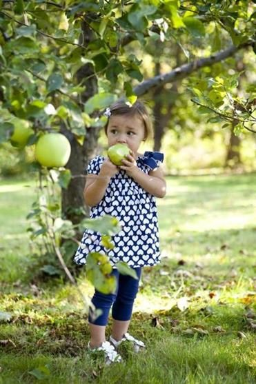Genial The Best Backyard Fruit Trees For New England   Magazine   The Boston Globe