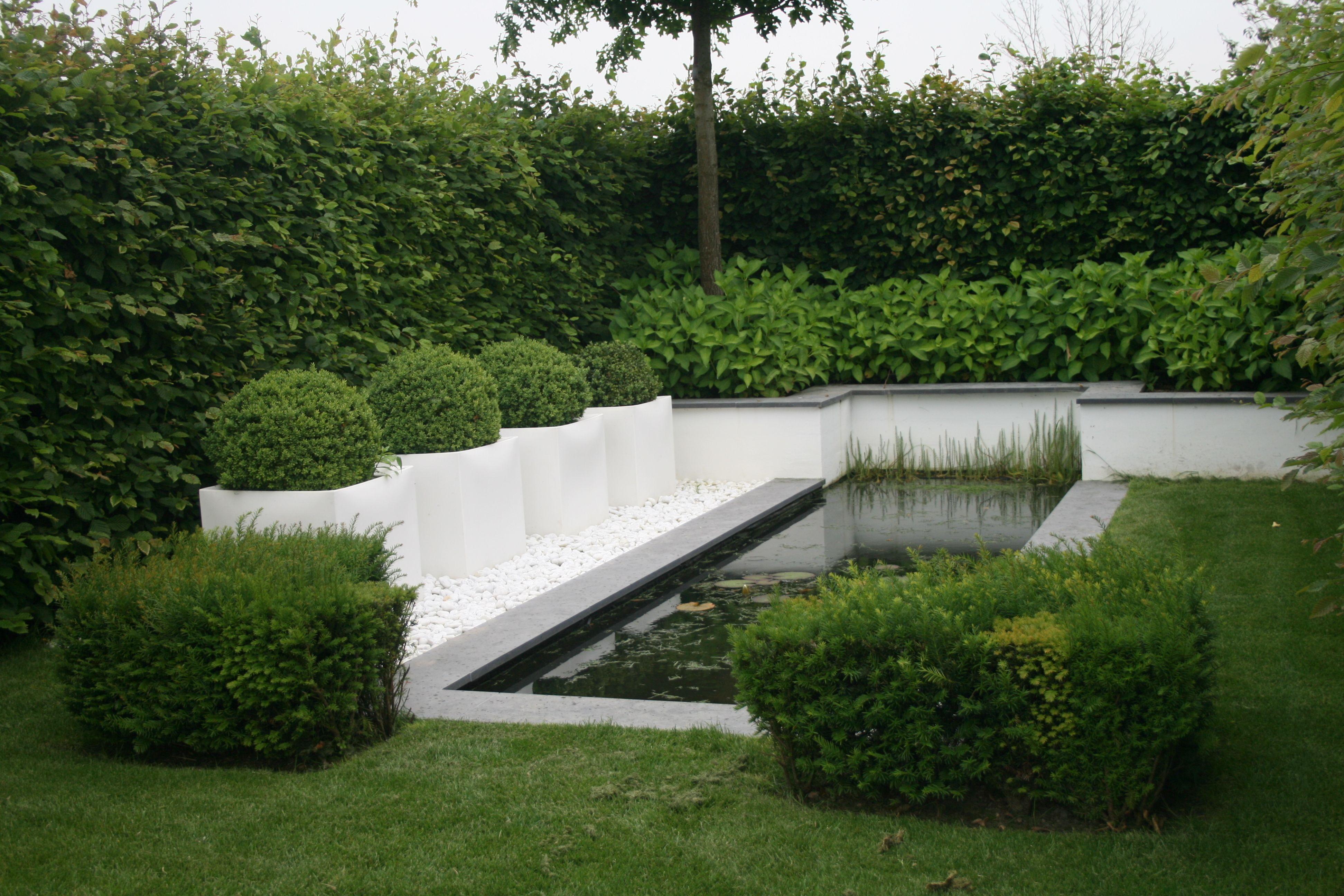 Buchs Im Kubel Gartenreise Holland Appeltern Pool Im Garten Topfgarten Garten