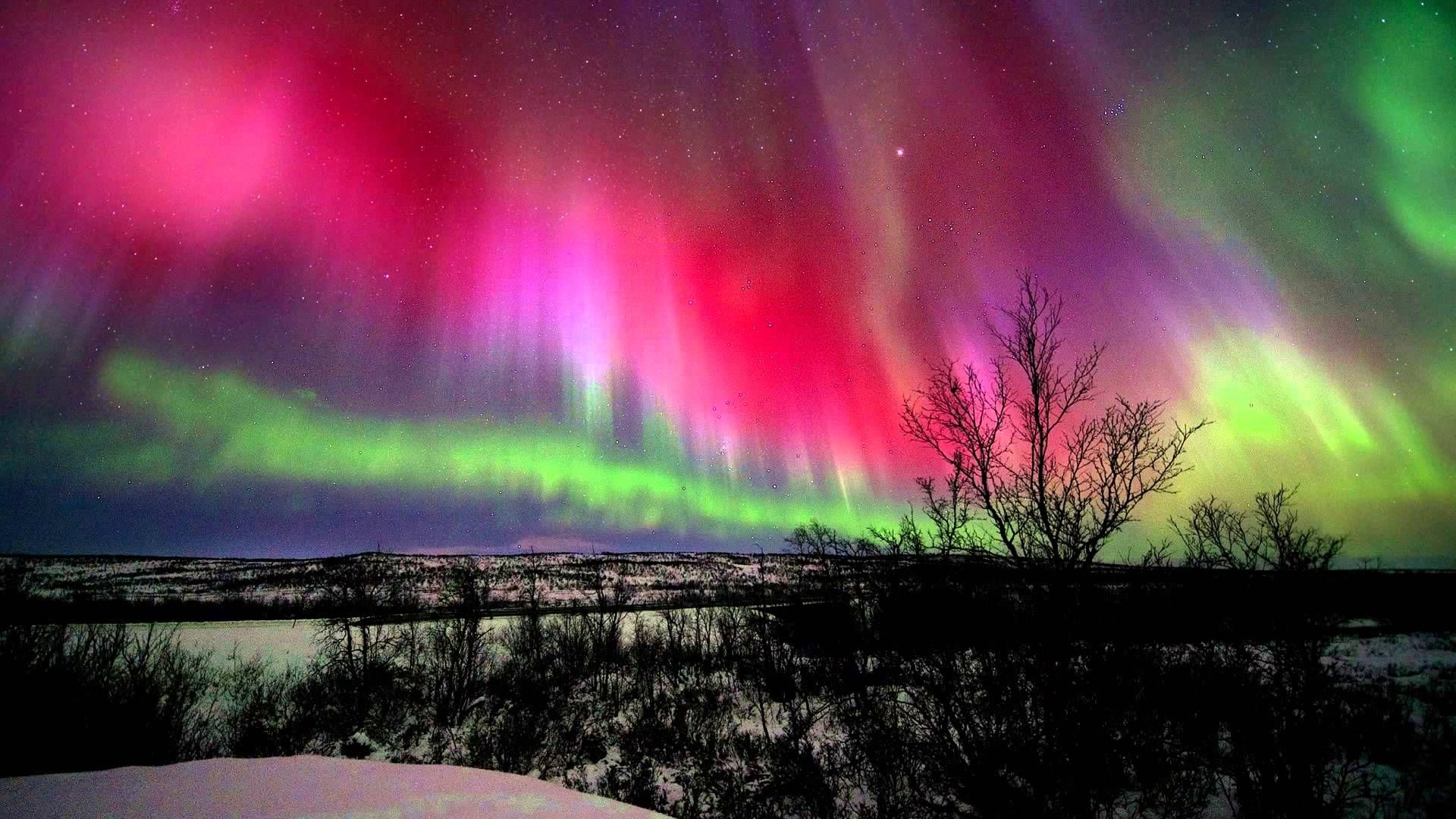 Risultati immagini per aurora boreale foto hd