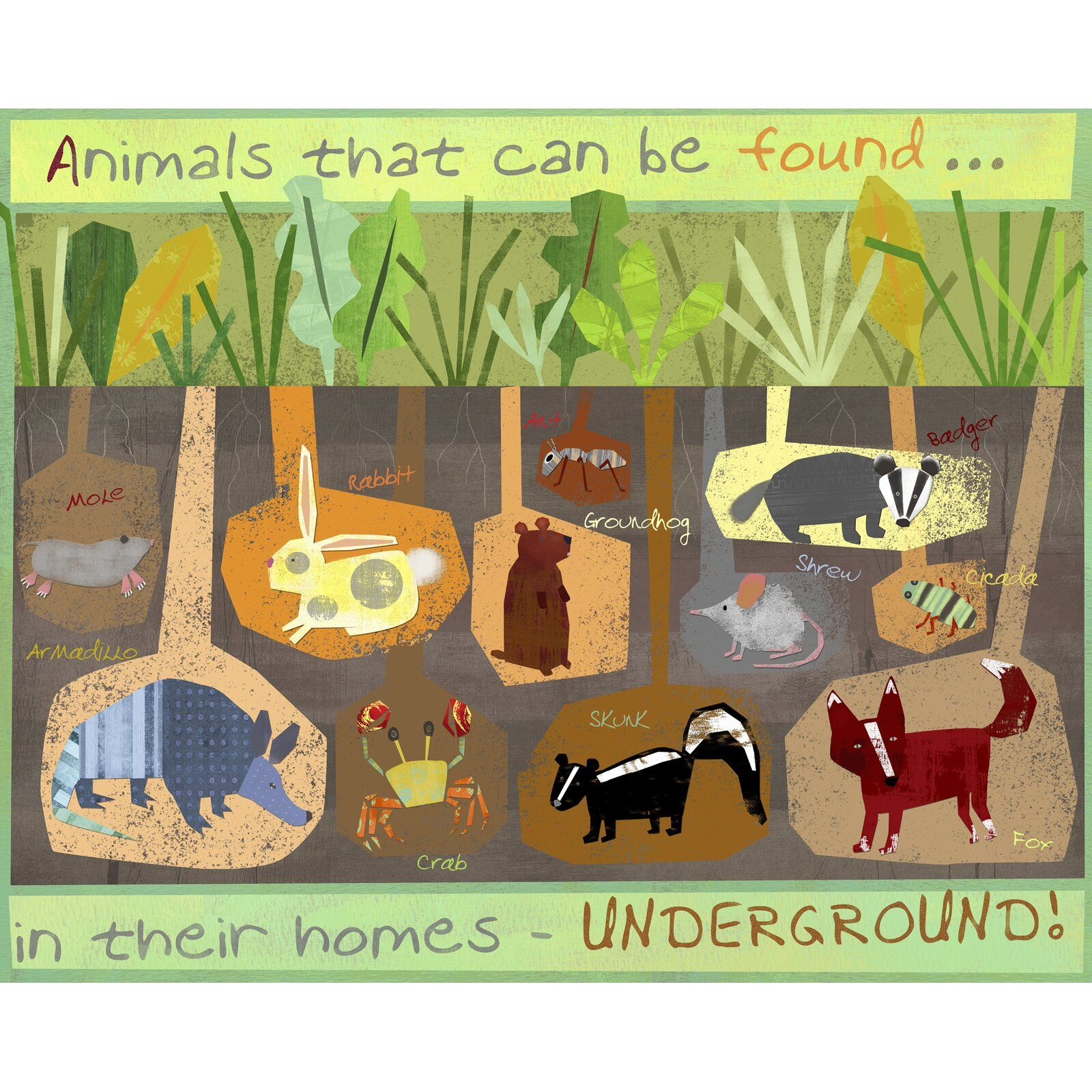 Oopsy Daisy Burrowing Animals Canvas Art In 2021 Animal Canvas Art Preschool Crafts Animal Canvas
