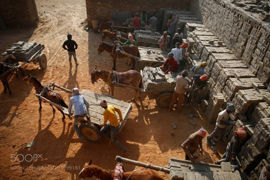 Popular #Photo #Journalism on #500px : Horse Driven Cart at a Brick Kiln in Nepal by SkandaGautam1 #photography https://t.co/znjVSpBk5t #f #photography