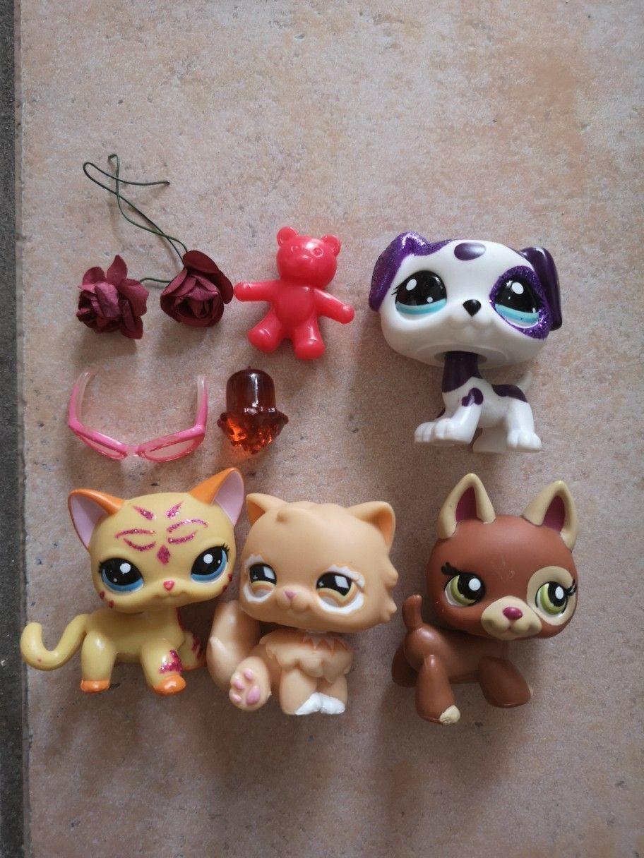 Pin By Lps Mur Cat On Lps Little Pet Shop Lps Littlest Pet Shop Toys For Girls [ 1216 x 912 Pixel ]