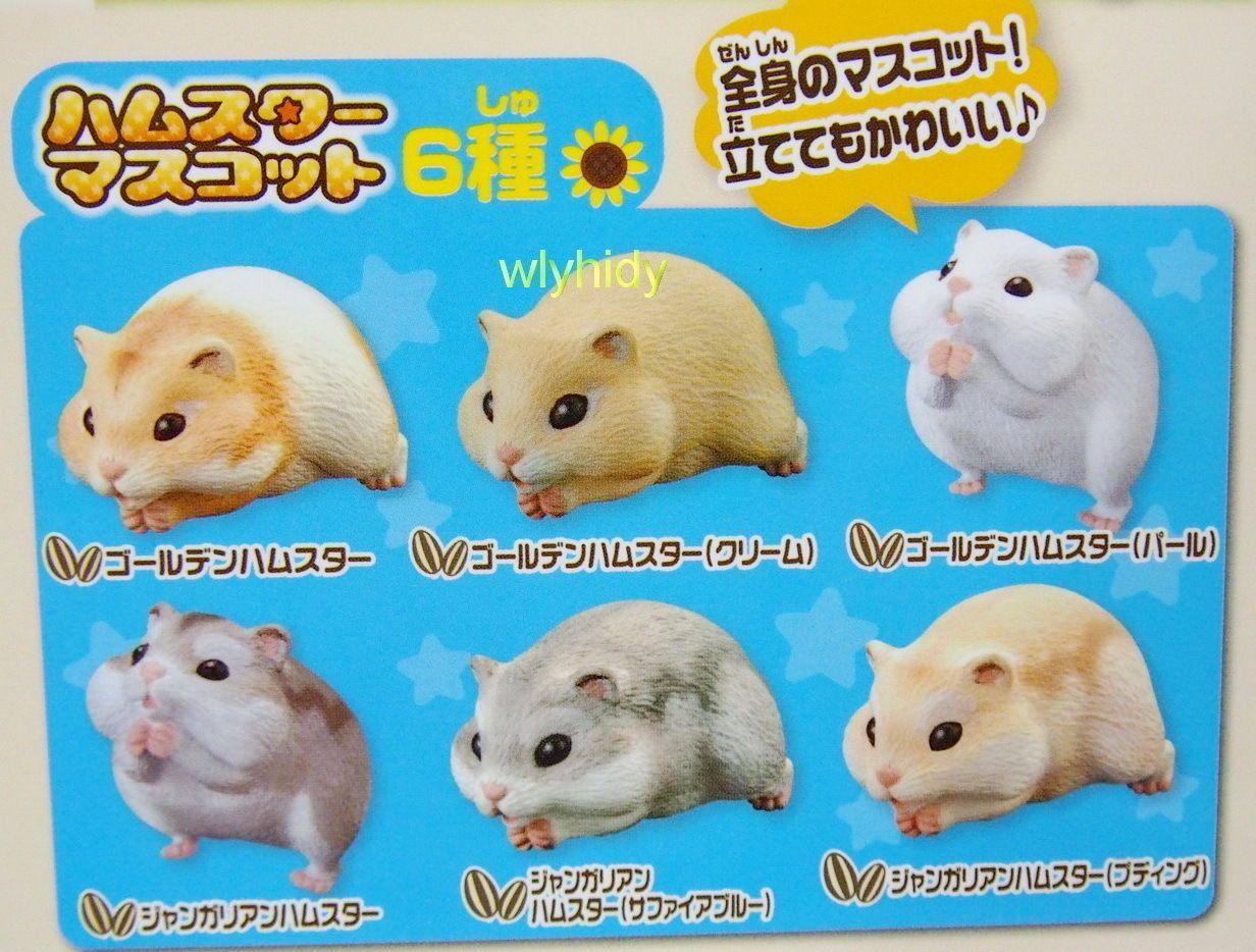 Hamster Mini Figure 6pcs Whole Body Gashapon Ebay Cute Hamsters Hamster Mini Figures