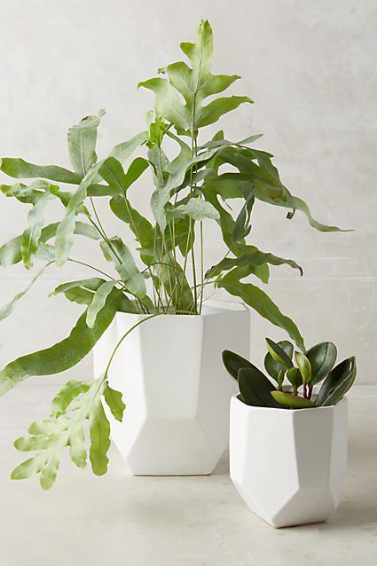 Cut Ceramic Planter - anthropologie.com