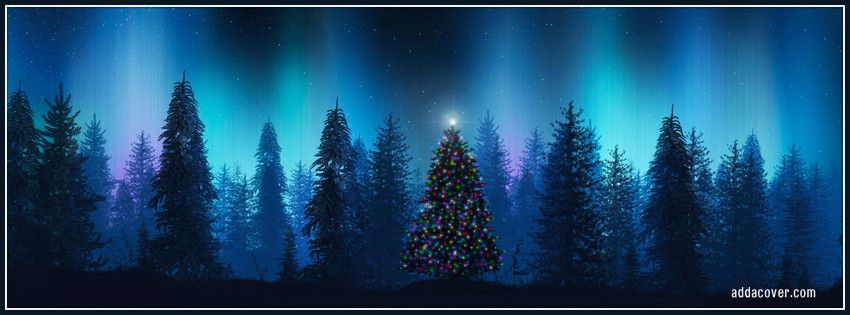 Oh Christmas Tree Facebook Cover
