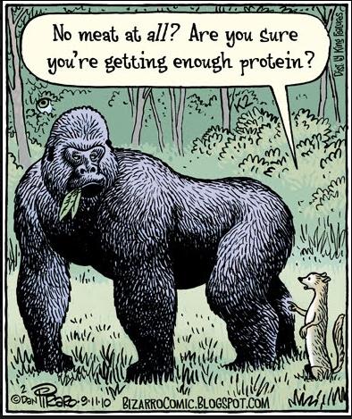 Nie jesz w ogóle mięsa? Czy jesteś pewien że dostajesz odpowiednią ilość białka w diecie?